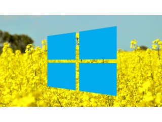 Spring promotion: 50% discount on Windows 7 and Windows 10 keys!